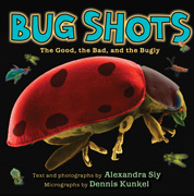 Bug shots : the good, the bad, and the bugly