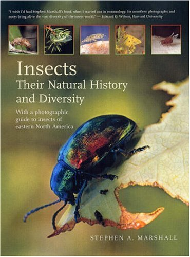 Insects : their natural history and diversity